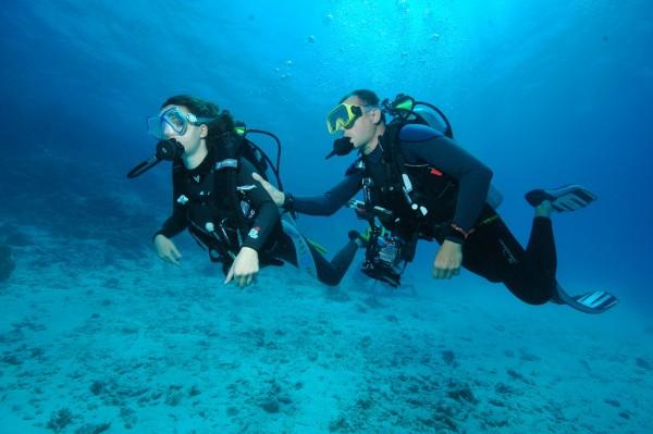 Envie de découvrir les profondeurs sous-marines?
